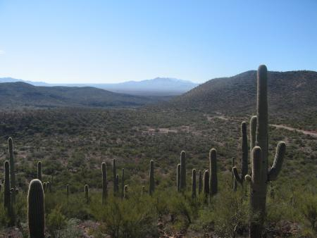 Looking S from Colossal Cave