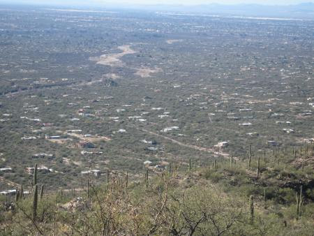 Looking across Tucson from Catalina Hwy