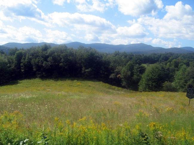 Looking W from VT100