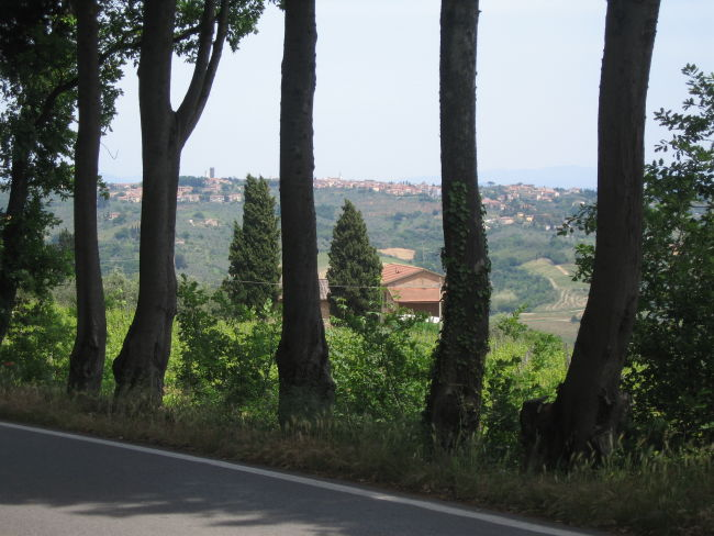 San Pancrazio through the trees