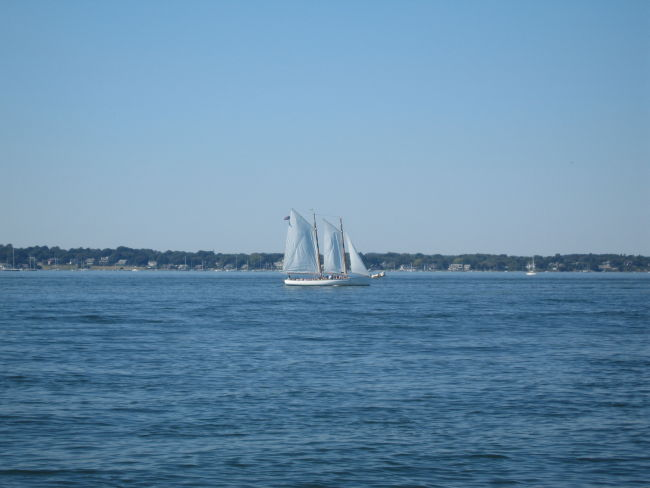 Sailboat w Jamestown Is in background