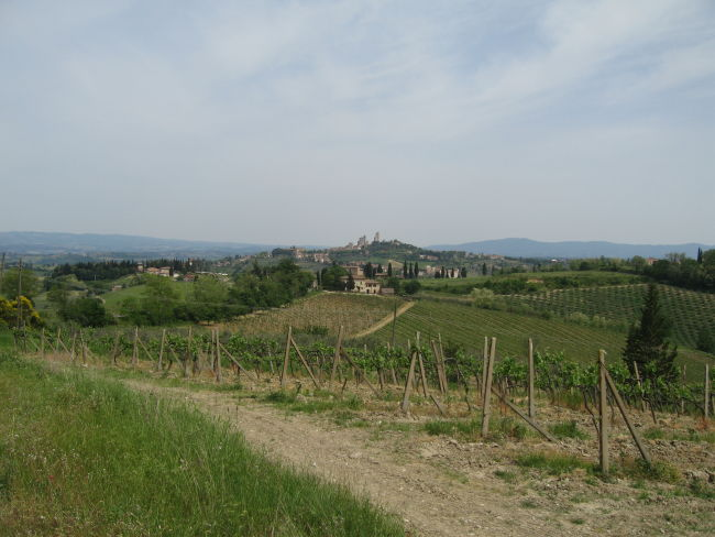 _San Gimignano